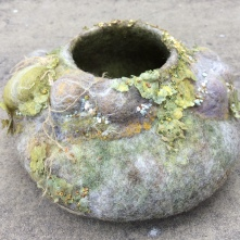 Lumpy Bowl with Lichen